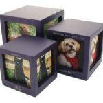 cmpc15-violet-photo-cubes-violet-ensemble